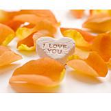 Heart, Rose leaves, Love message
