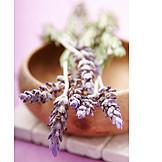 Lavender, Lavender blossom, Wooden bowl