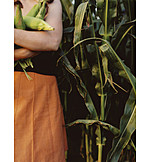 Maize field, Farmer