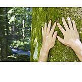 Moss, Nature, Hand, Feeling