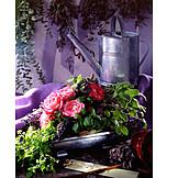Decoration, Still life, Romantic