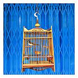 Pets, Birdcage