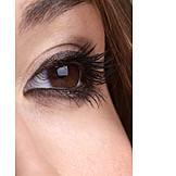 Eye, Brown eyes, Eyelashes