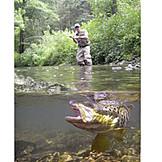 Fisherman, Fishing, Biting