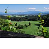 Landscape, Bavaria