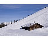 Alp, Chalet