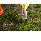 Moss, Forest, Foot