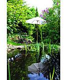 Garden, Seating, Goldfish pond