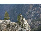 Rocks, Pinnacle, Grand canyon of the yellowstone
