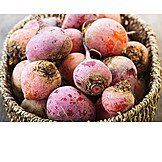 Harvest, Root vegetable, Swede