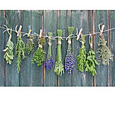 Herb, Drying, Garden herbage