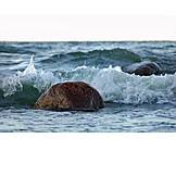 Sea, Rock, Surf