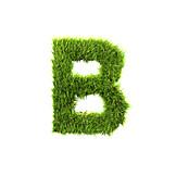 Letter, B, Capital letter