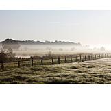 Landscape, Fog, Morning mood