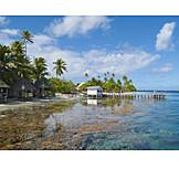 Holiday & Travel, Tropical, Travel Destinations, Island, Fakarava