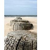 Beach, North sea, Groyne