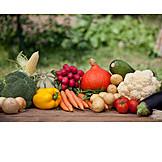 Vegetable, Harvest