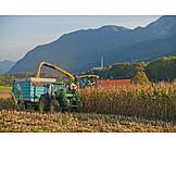 Agriculture, Harvest, Harvest