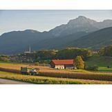 Agriculture, Harvest, Berchtesgadener Land, Meadow, Rupertiwinkel