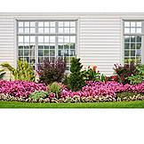 Garden, Window, Front Garden, Flower Bed