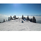 Winter sport, Ski resort