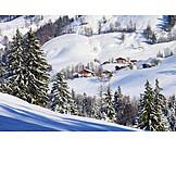 Winter, Alp