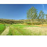 Landscape, Rural Scene, Summer