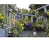 Garden, Flower, Flower Window, Garden Center