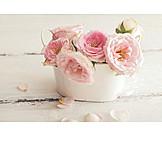 Rose petals, Flower arrangements