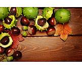 Autumn, Autumn, Chestnut Tree