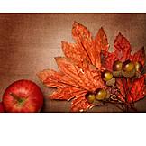 Autumn, Season, Autumn