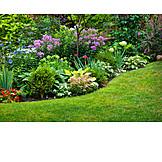 Garden, Flora, Gardening
