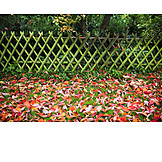 Garden, Autumn, Leaves, Rail Fence