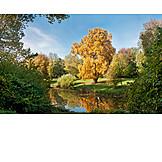 Park, Autumn, Autumn Landscape
