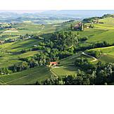 Piedmont, Barolo, Castello di la volta
