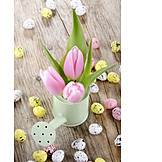 Tulip, Easter eggs, Easter decoration