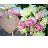 Copy space, Bouquet