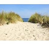 Dunes, Coastline