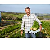 Carrots, Harvest, Farming, Farmer