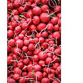Radish, Root vegetable