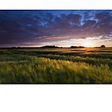 Landscape, Sunset, Sunset