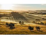 Hill, Mist, Italy, Tuscany
