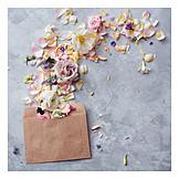 Flowers, Love letter, Invitation