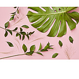 Forms, Leaf