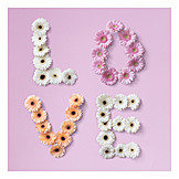 Flower arrangement, Love