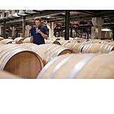 Winemaking, Quality, Winetasting, Winery