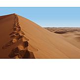 Desert, Footprint