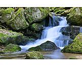 Waterfall, Torrent