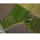 Field, Arable, Cultural landscape