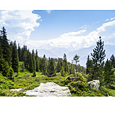 Bernese oberland, Beatenberg, Emmental alps